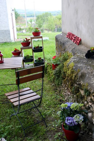 Mon petit jardin c t nord for Jardin expose nord
