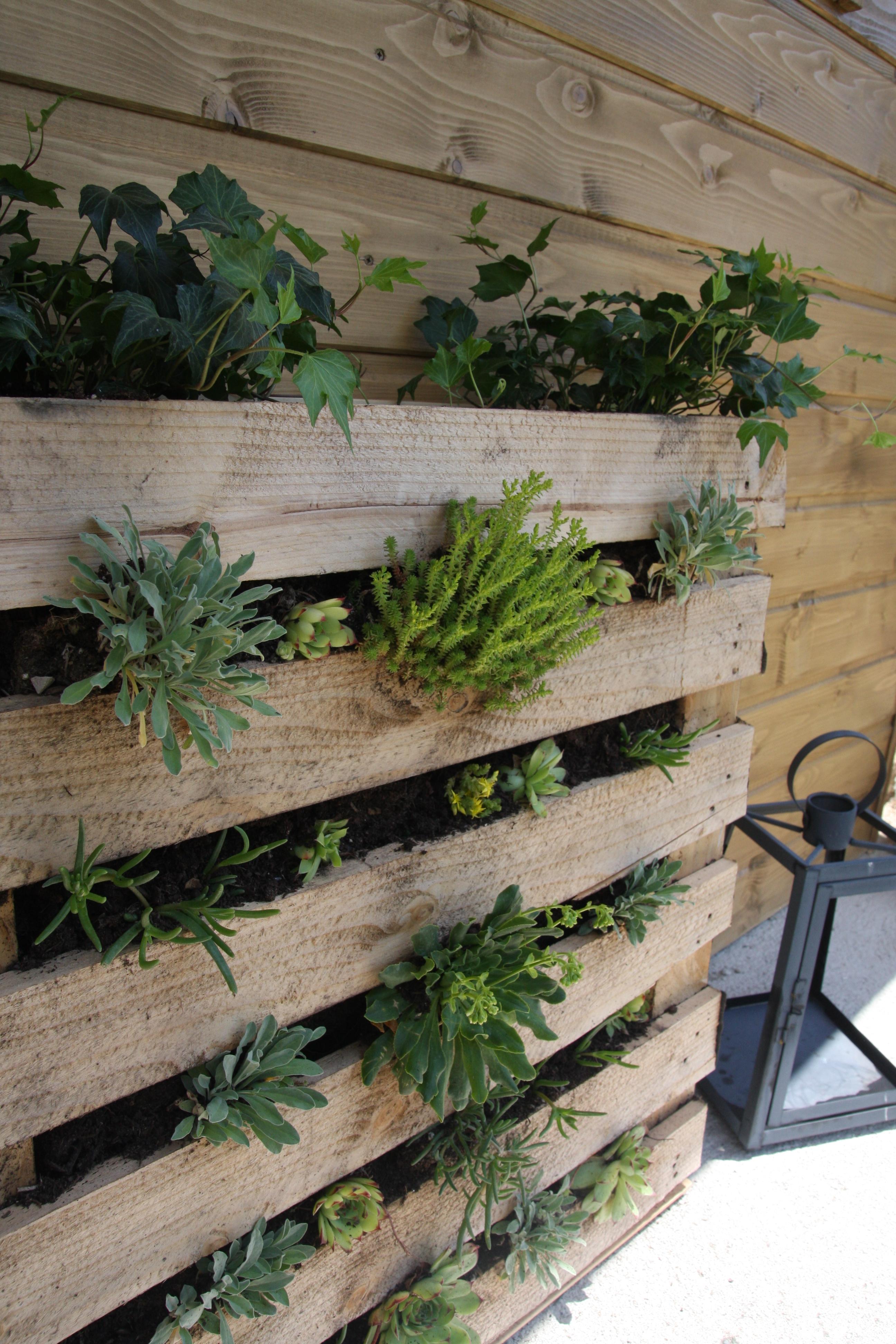 Mur Végétal Extérieur Palette la palette végétale - debobrico