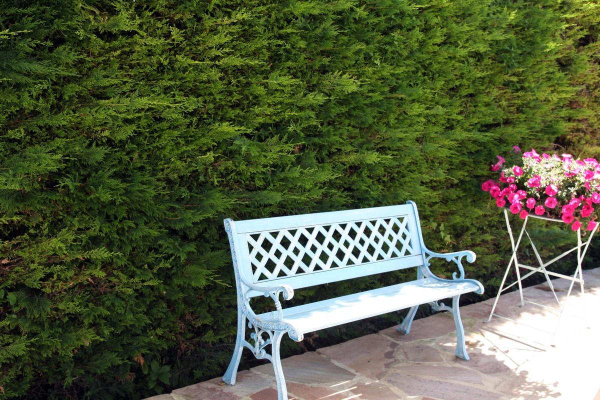 Le jardin de mes parents for Le jardin d agathe 19