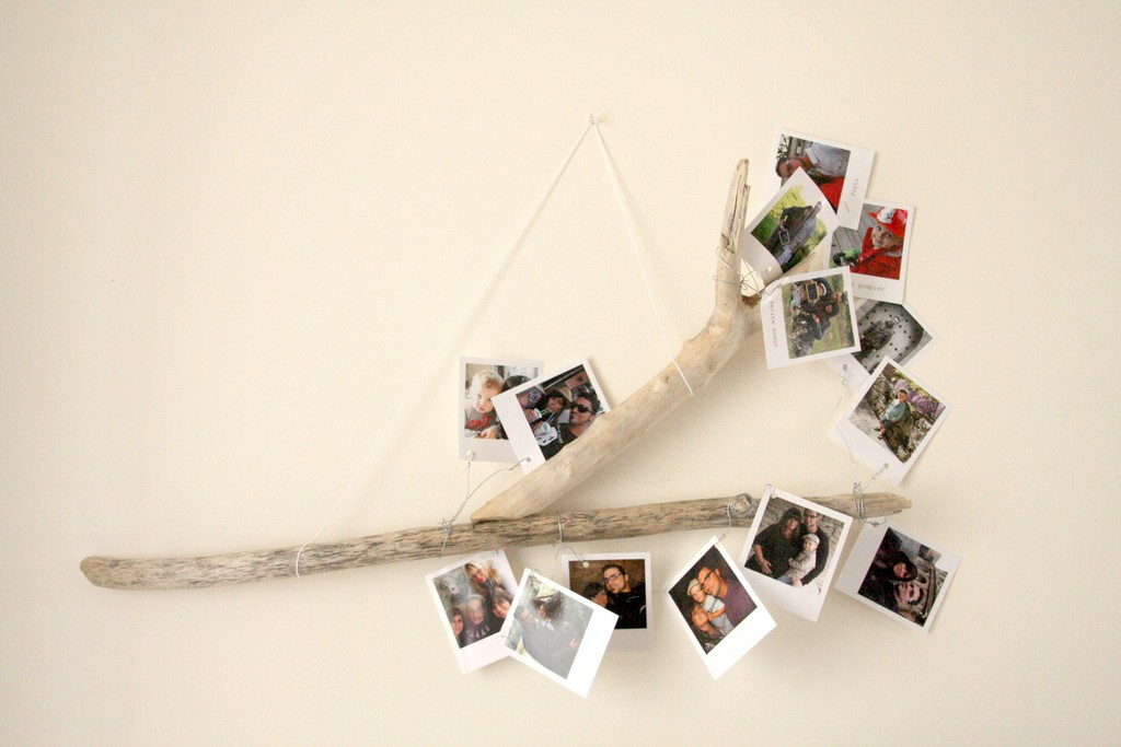 La branche polaroids - Mur photo polaroid ...